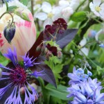 Natural English country garden style flowers. Locally grown flowers for delivery. Birmingham UK