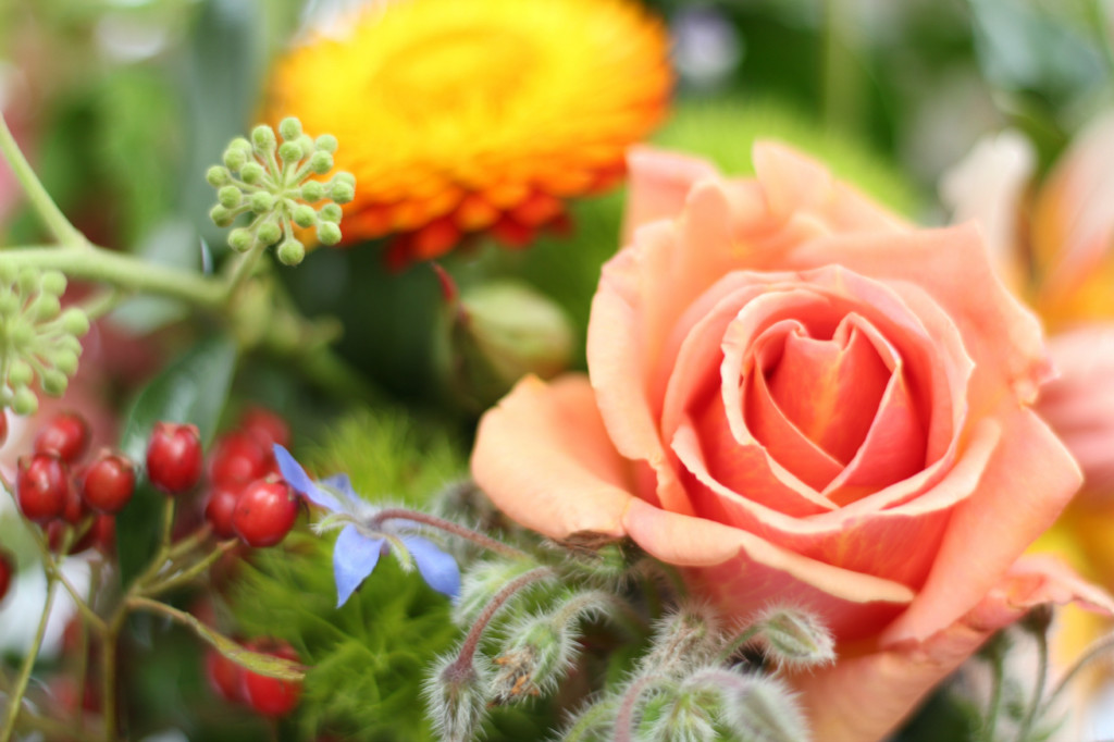 British grown flowers for events, green funerals, eco wedding flowers in and around Birmingham.