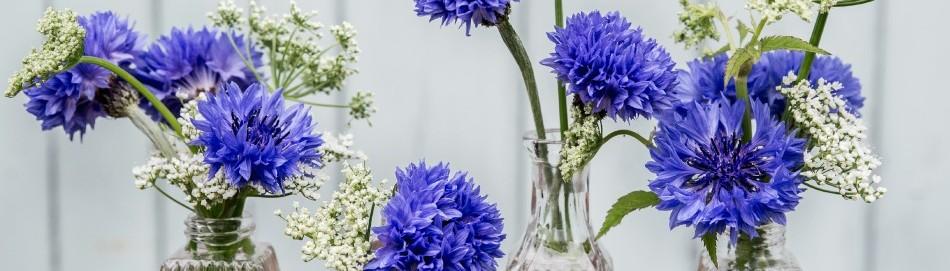 TUCKSHOP FLOWERS