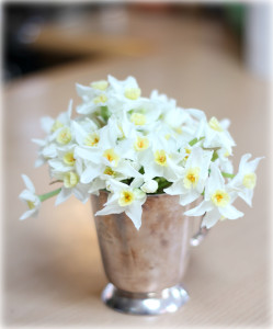 February flowers UK. Scented narcissi. Bespoke event flowers in Birmingham and Central England.