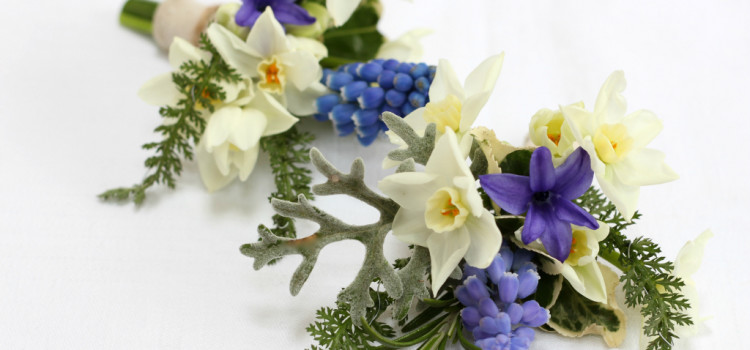 Spring wedding corsages by Tuckshop Flowers. Birmingham wedding florist B30. Available for weddings in Birmingham, West Midlands, Worcestershire and Warwickshire