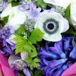 seasonal spring flowers for country style weddings, stylish event flowers and natural funeral flowers in Birmingham, West Midlands, Worcestershire and Warwickshire
