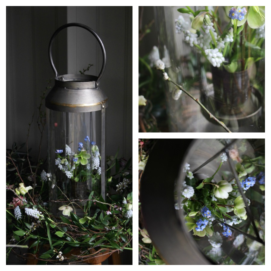 Large lanterns with natural wildflower style spring arrangement. Vine nests with muscari, fritillaries, green hellebores and forget me nots. Tuckshop Flowers Birmingham.