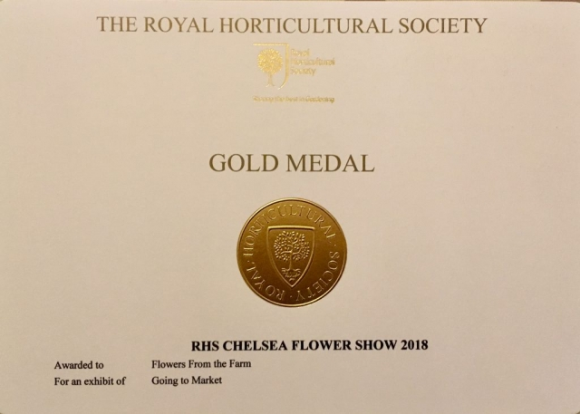 Gold medal winner at RHS Chelsea Flower Show as part of the Flowers from the Farm florist and flower grower team