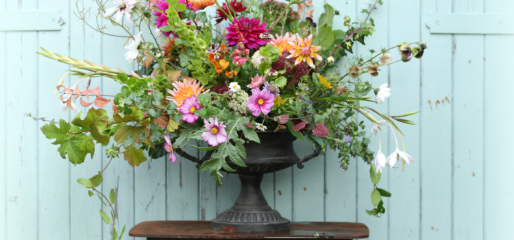 What flowers are in season in October? Seasonal British flowers by Tuckshop Flowers, Birmingham for wildflower weddings Birmingham, West Midlands, Worcestershire and Warwickshire