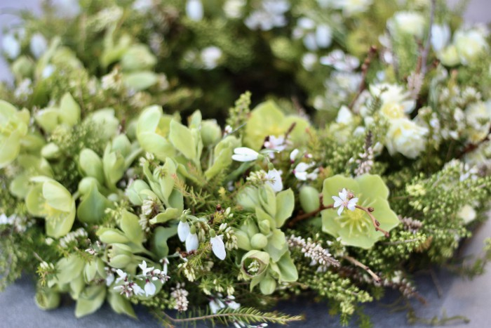 natural funeral wreath with green hellebores, snowdrops, white heather and winter flowering cherry blossom